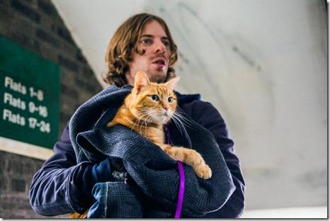 A Street Cat Names Bob